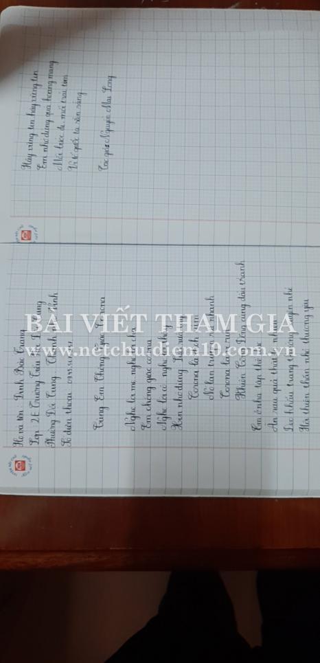 Đinh Bảo Trang