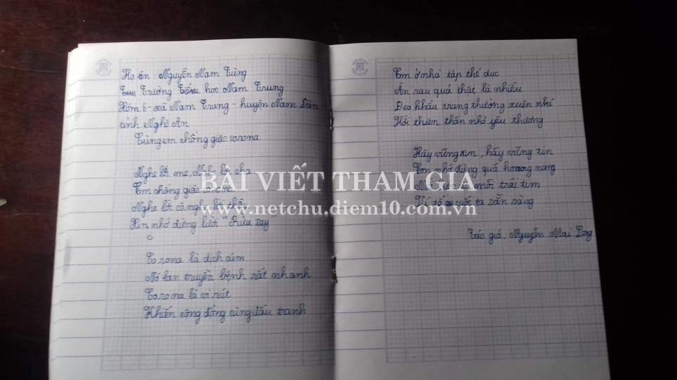 Nguyễn Nam  Tùng